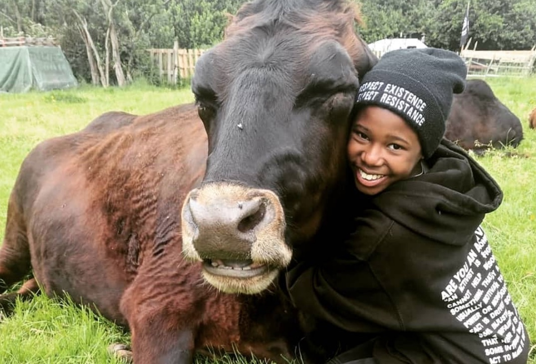 Aiyana Goodfellow With A Cow