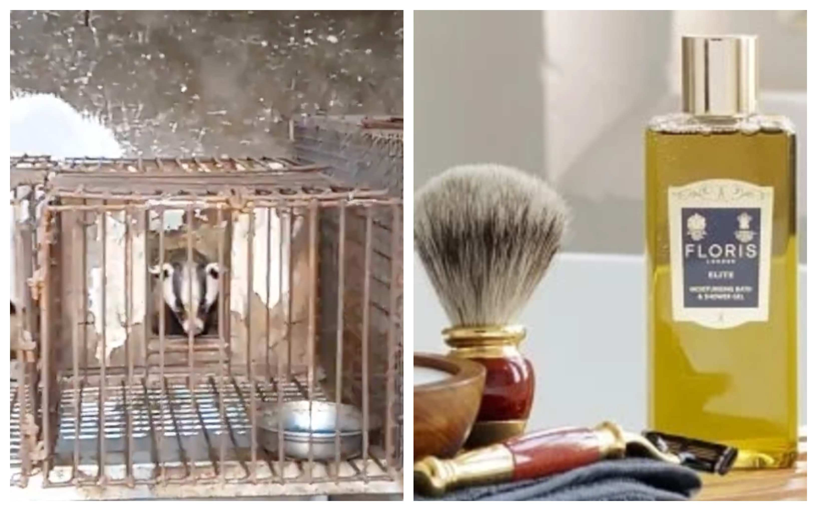 Badger fur industry and Floris London products