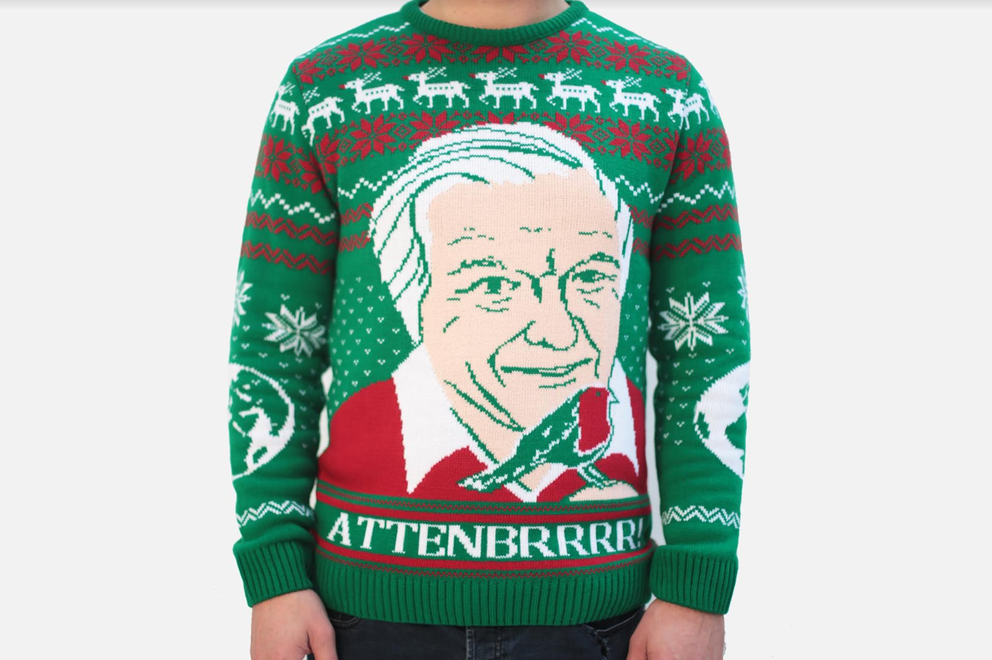 David Attenborough Christmas Jumper