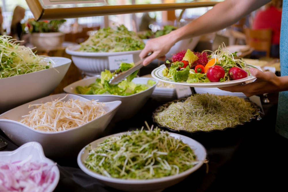 Raw food at the Hippocates Institute
