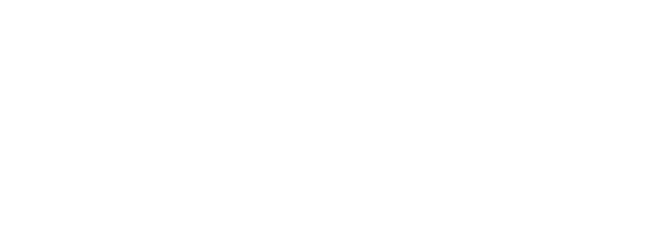 True Link Financial logo