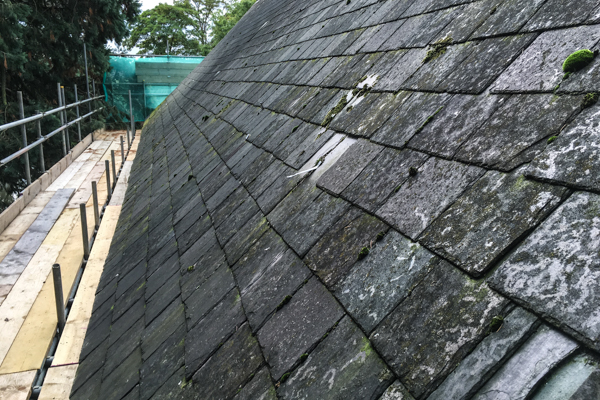 The old mossy slate roof