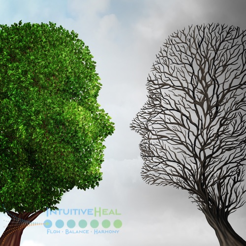 Image of a two heads formed with tree branches - one with leaves and one without