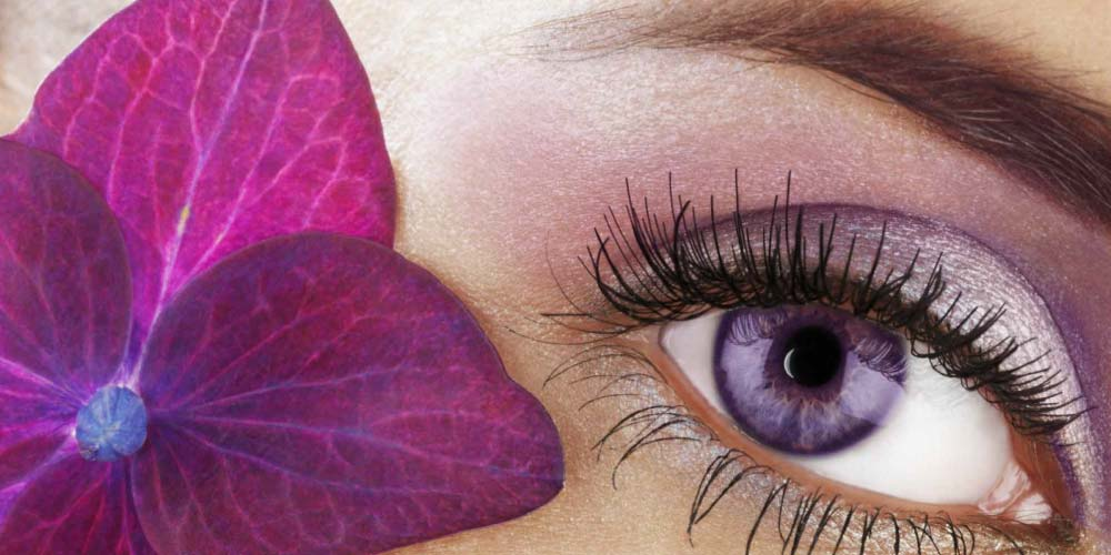 beauty treatments eye treatments image