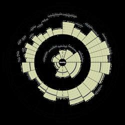 The Leadership Circle Profile
