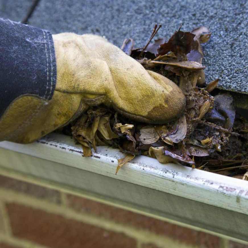 Residential gutter being cleaned in Butler