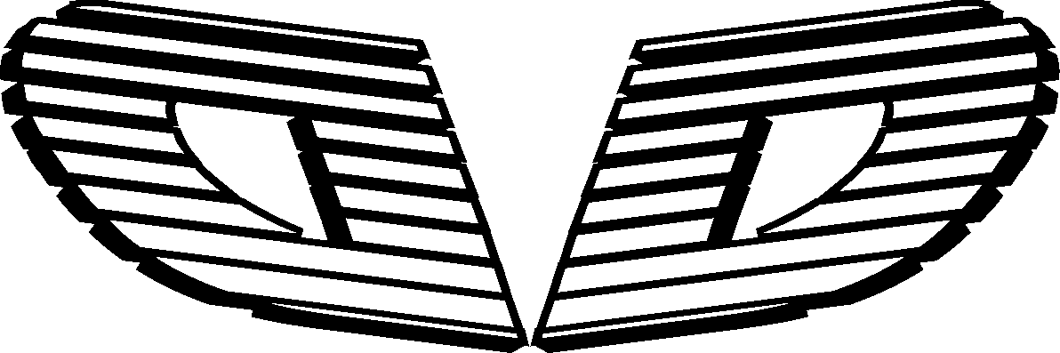 כושר קבי דגני לוגו שחור