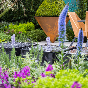 Colourful planting in modern garden