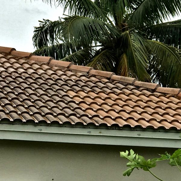 Roof cleaning performed with soft washing techniques.
