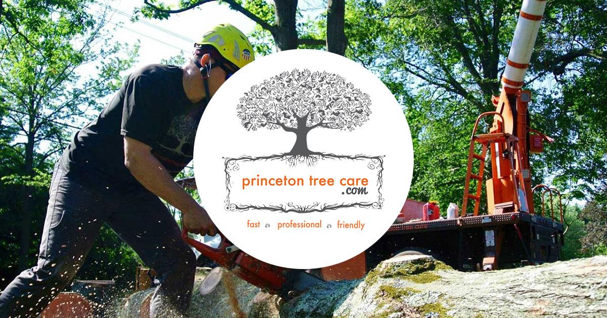 Princeton Tree Care - Premier Tree Service & Removal