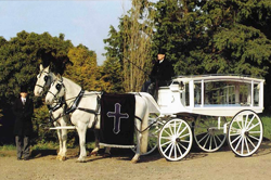Photo of alternative funeral vehicles
