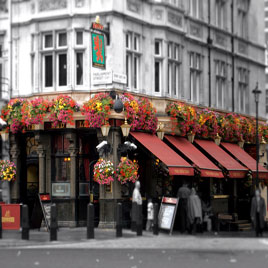 Red Lion Westminster Pub