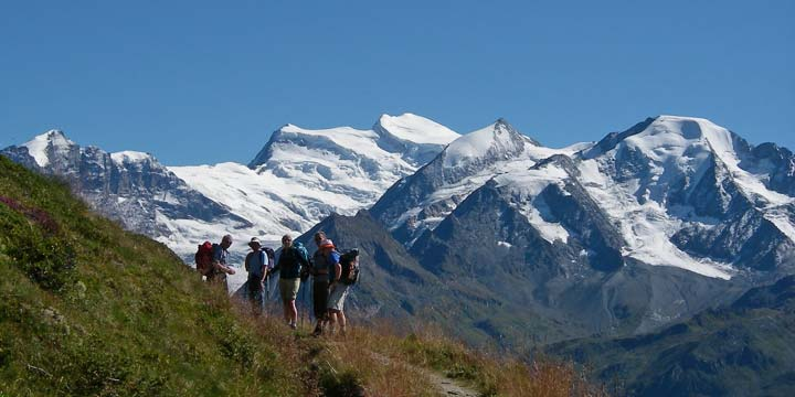 Guided Alpine walking and trekking tours