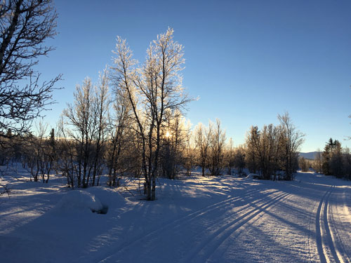 The Venabu landscape is open and rolling, surrounded by mountains and birch forest, perfect for Nordic skiing