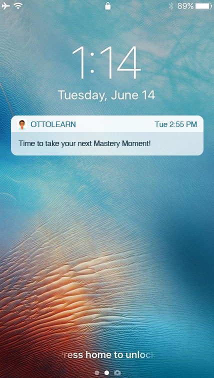 Mastery Moments™ - OttoLearn Personalized Learning