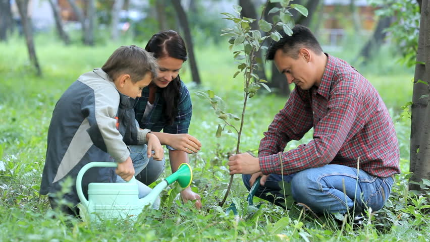Image result for family planting a tree
