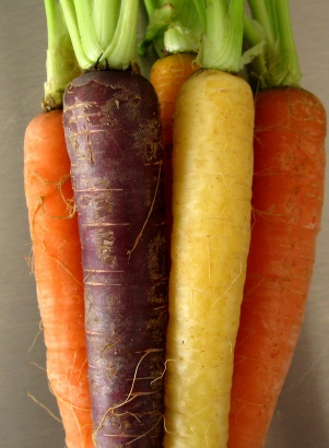Image result for carrots originally purple
