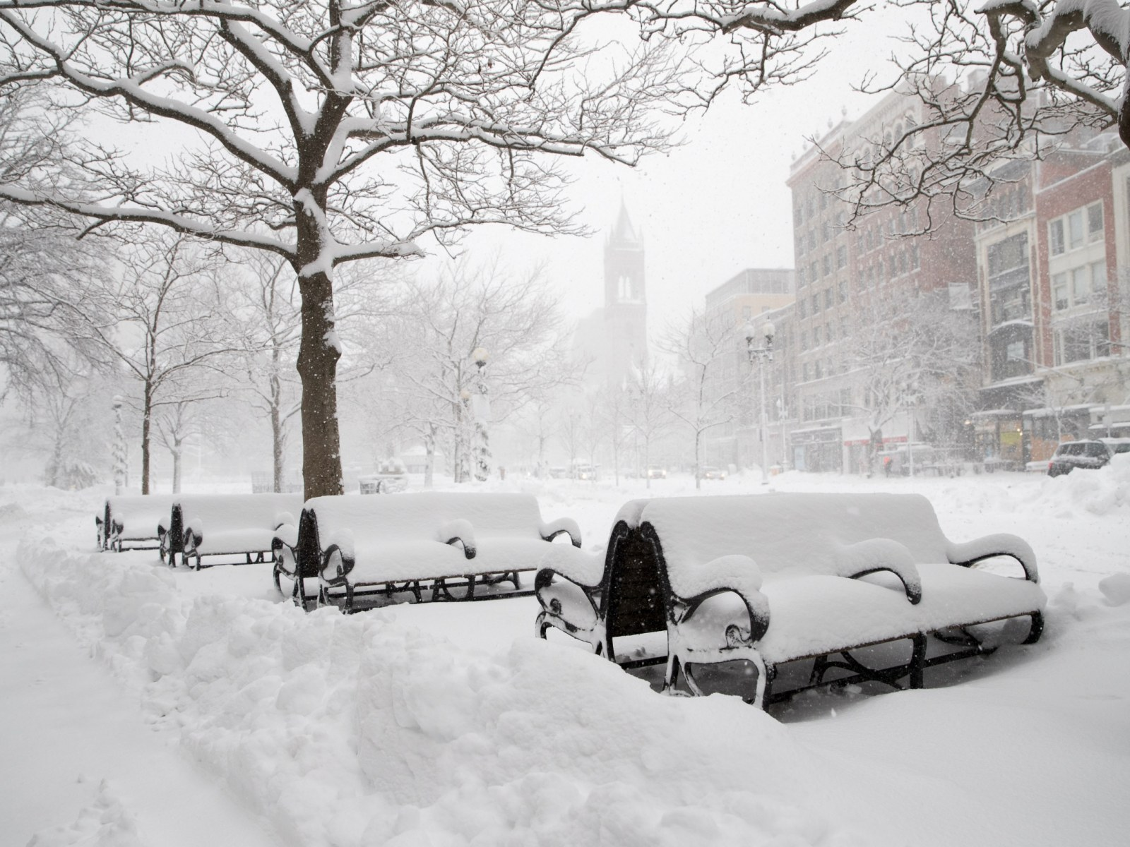 Image result for winter storm in new jersey