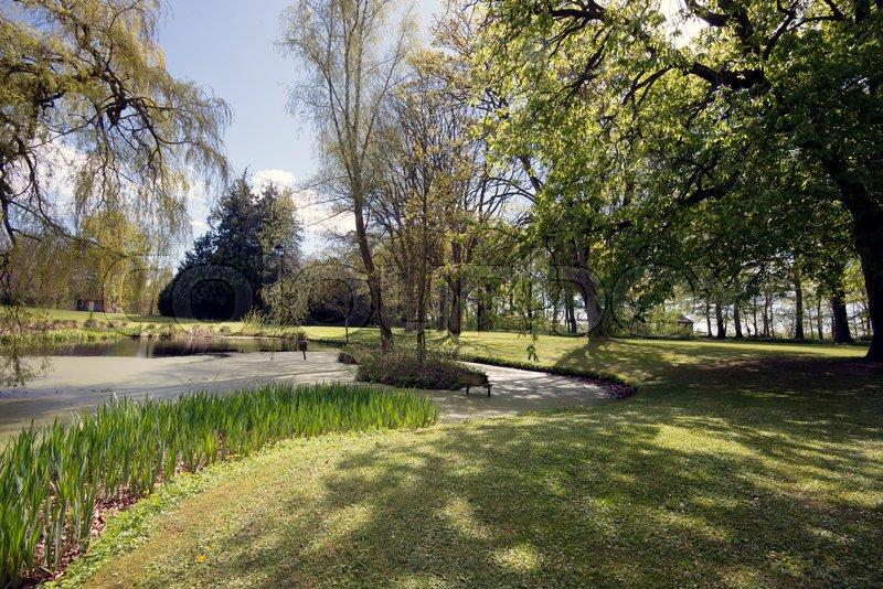 Beautiful horizontal springtime park ...   Stock image   Colourbox