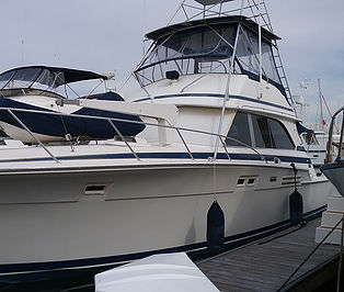 Photo of sea craft with pressure sensitive window tint applied.