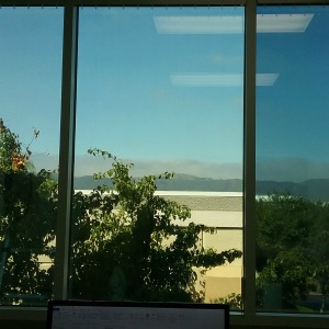 Image looking out of a commercial window tinted in Temecula, CA.