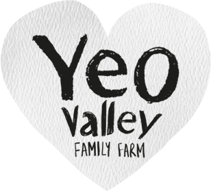Yeao Valley logo by Starke Creative