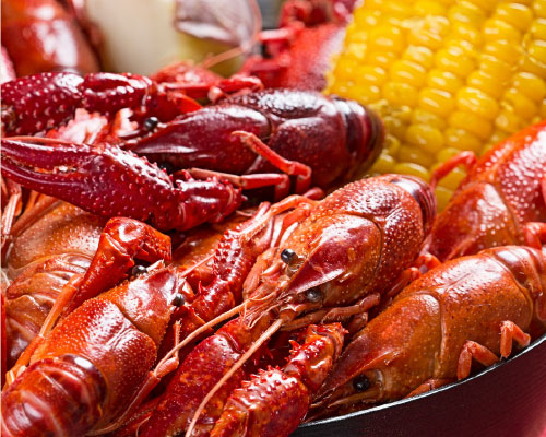 Boiled Crawfish (seasonal)