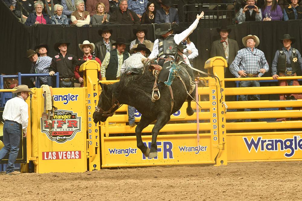 Saddle Bronc Riding (Photo: Dan Hubbell)
