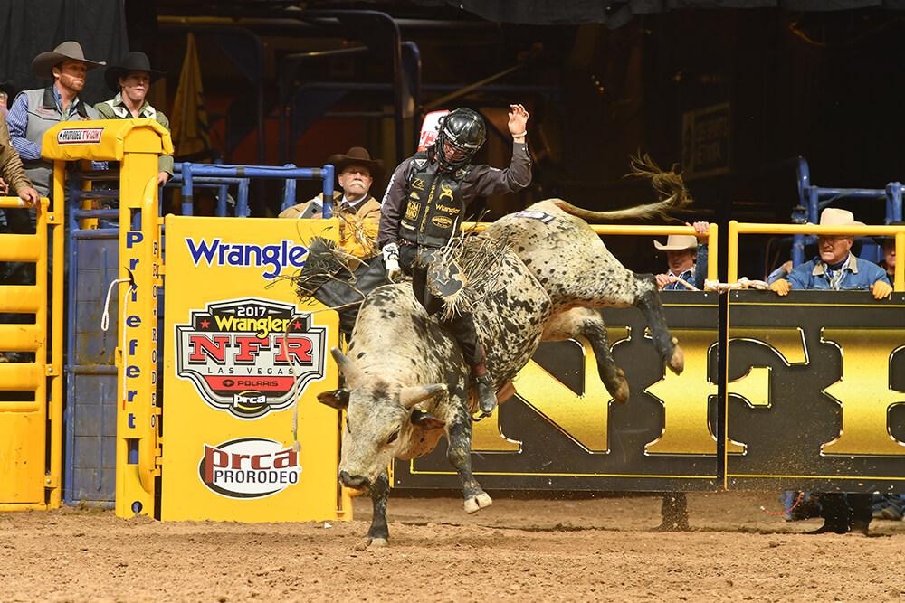 Bull Riding (Photo: Dan Hubbell)