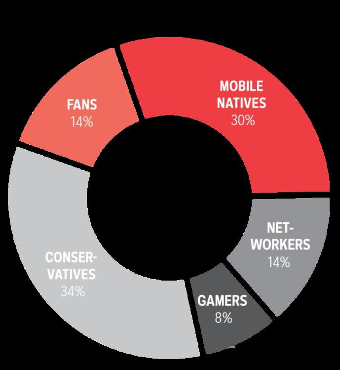 Online User Types, Online-Nutzergruppen