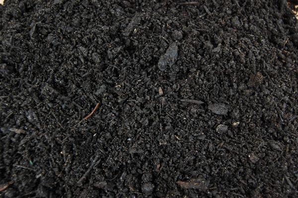 horticultural benefits - Garden Soil