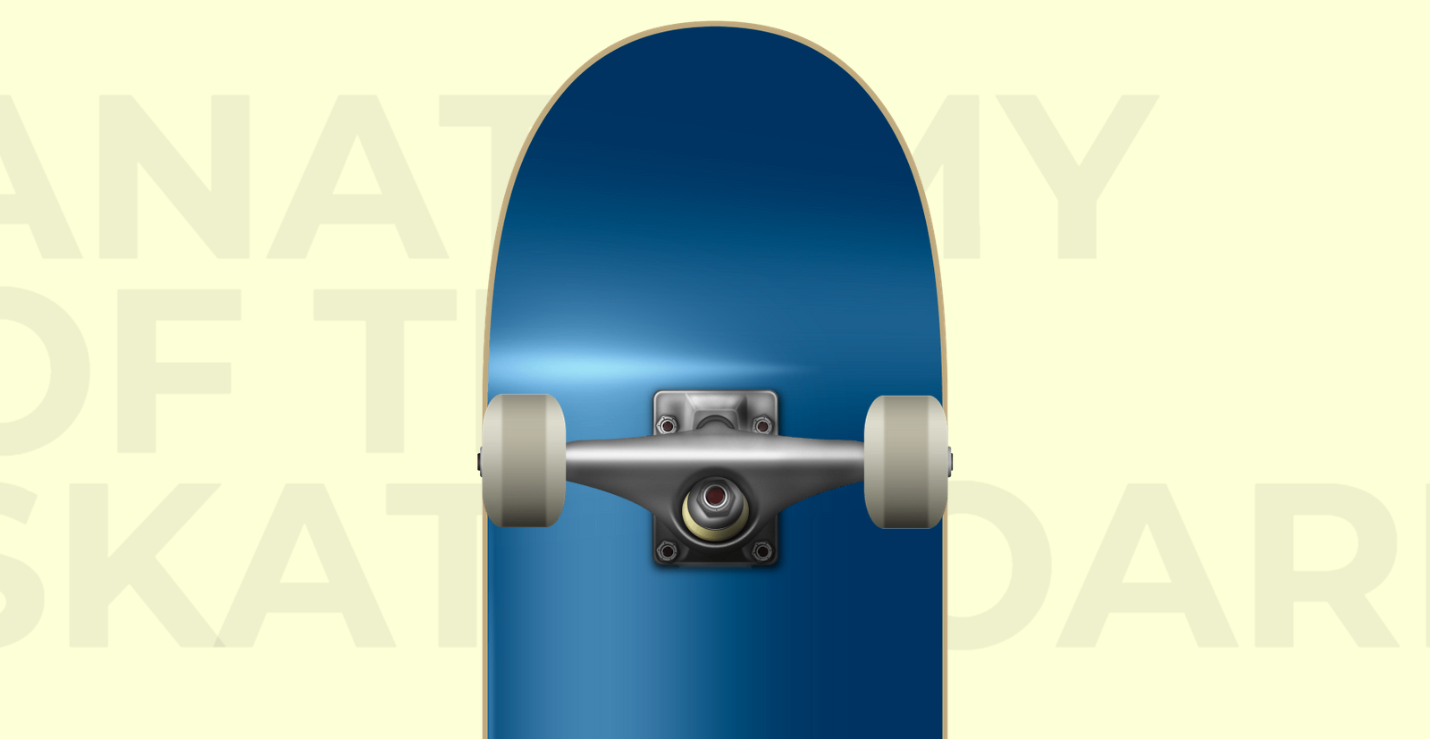 The underside of the back half of a skateboard.