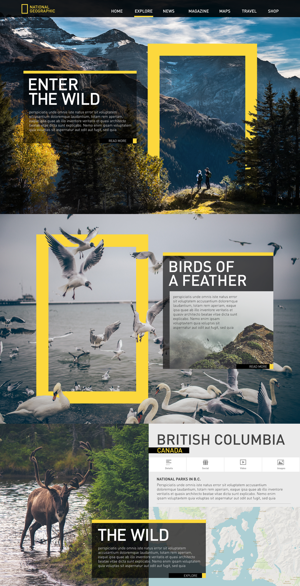 Concept for National Geographic site using rule of thirds