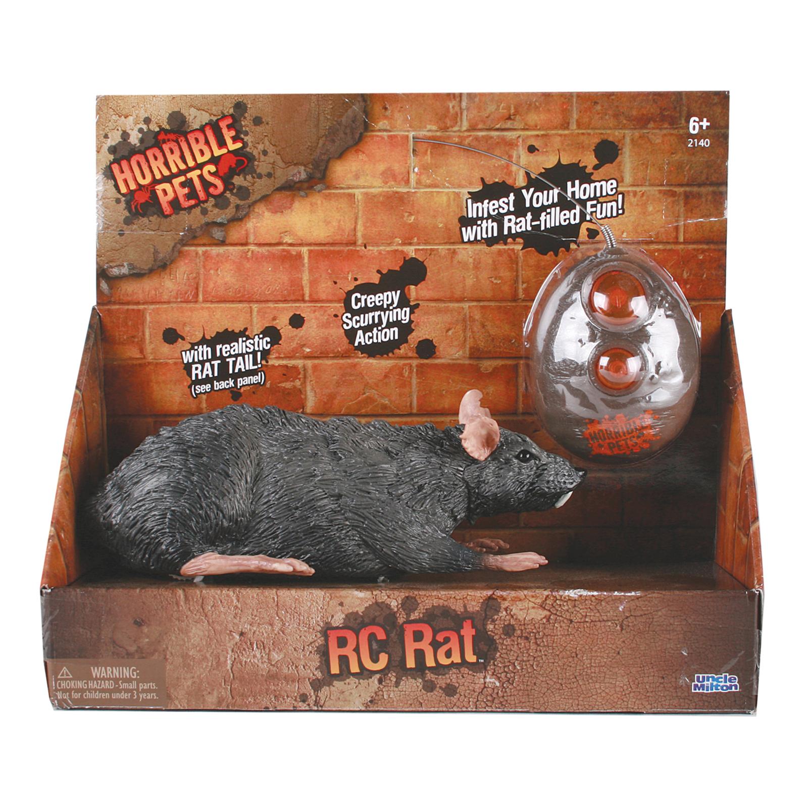 RC Rat