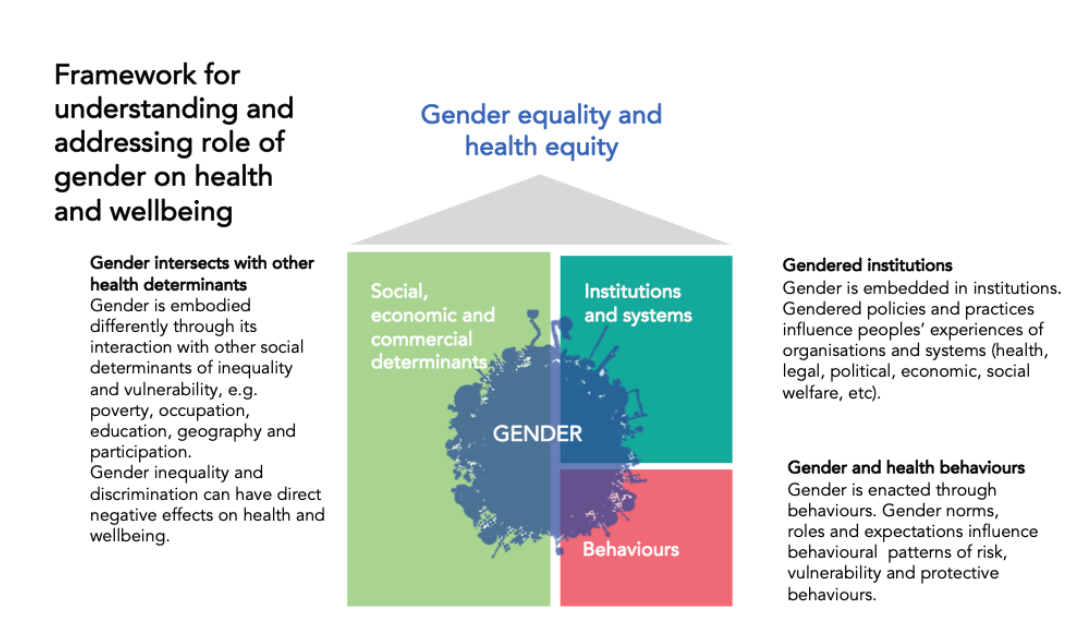 Figure 1: Conceptual framework illustrating the relationship between gender and health and well-being. Hawkes, S., & Buse, K. The Politics of Gender and Global Health. In The Oxford Handbook of Global Health Politics. : Oxford University Press.