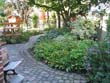 Residential garden design: click to see larger image