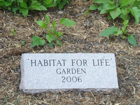 The Habitat for Life Garden at Lakeside School