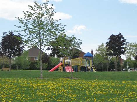 The neighbourhood park landscape design catered for all ages, including a playground area for youngsters