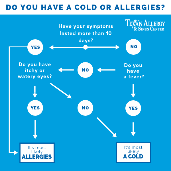 Cold Vs Allergy Flow Chart