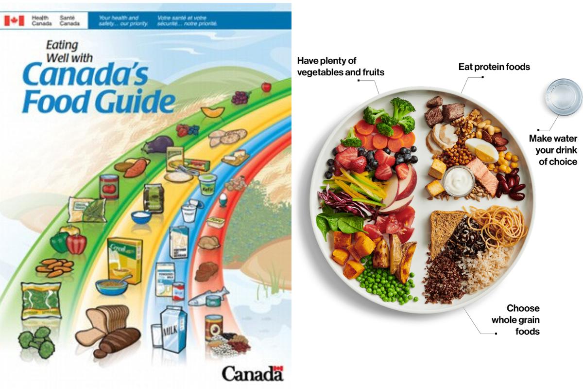2007 Food Guide vs. 2019 Food Guide