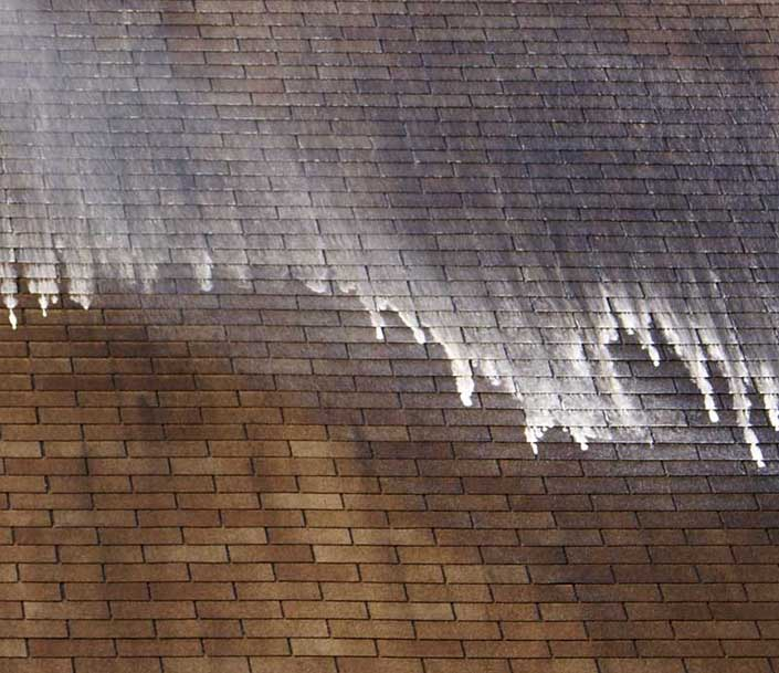 GEM will restore the health and vitality of your roof.