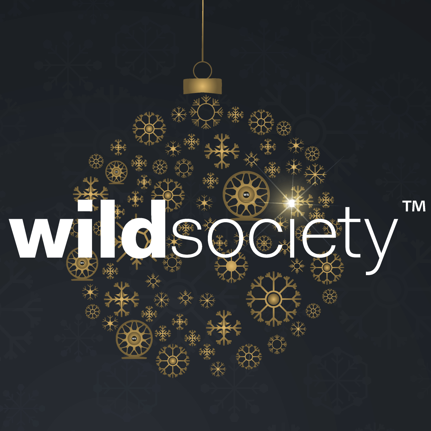 Wild Society App end of the year