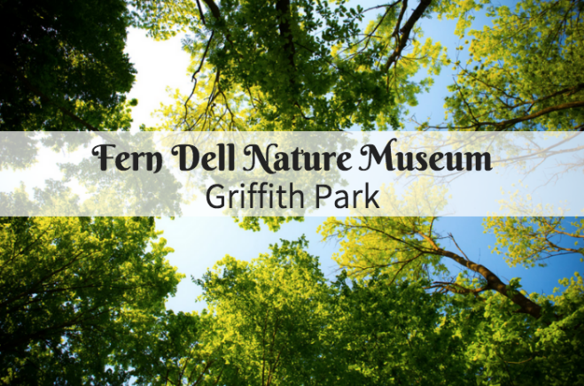 fern dell nature museum los angeles