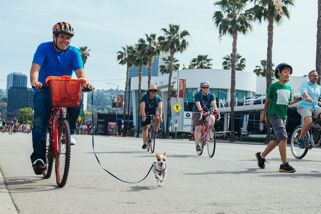 man walking his little dog on his bike