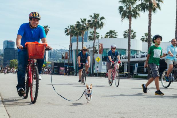 man walking his little dog on his bike