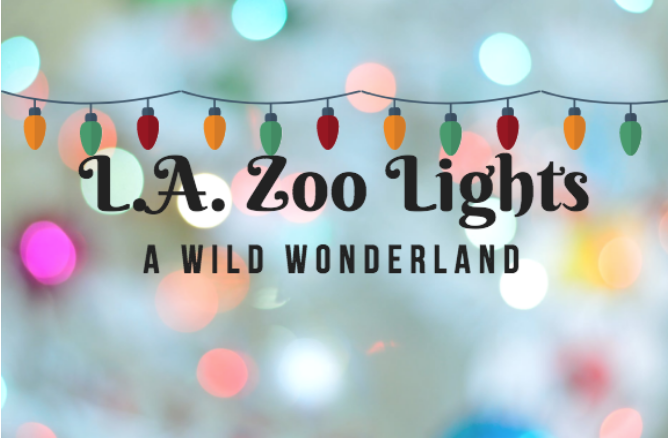 la zoo christmas lights