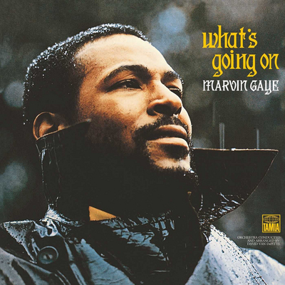 Marvin Gaye - What's going on (vinyl record)