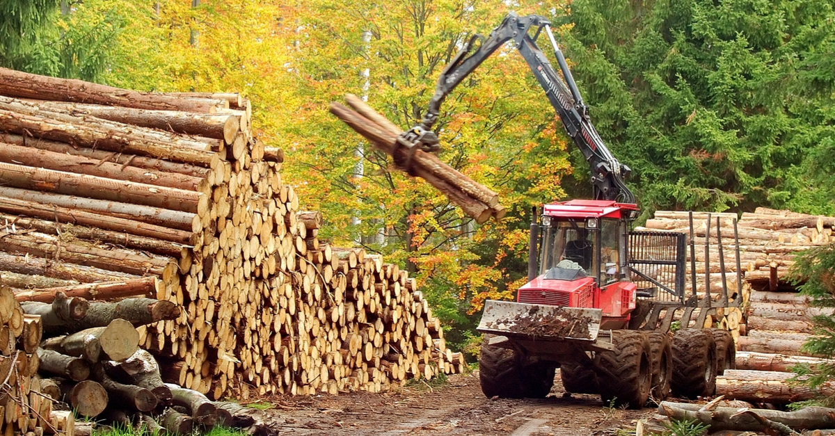 Machine carrying logs