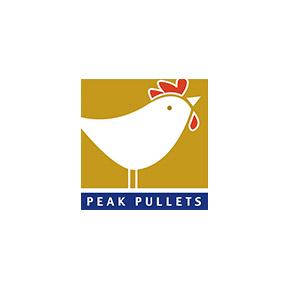 Peak Pullets