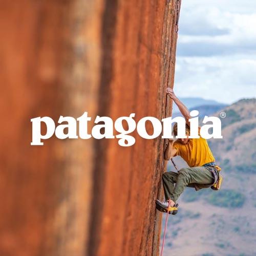 Patagonia - Digital Commerce Partner